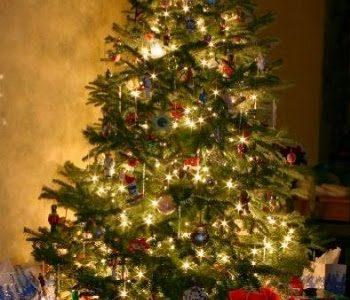 L'Albero di Natale tra leggenda e tradizione