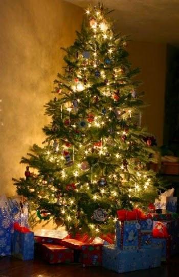 Foto Alberi Di Natale Classici.L Albero Di Natale Tra Leggenda E Tradizione